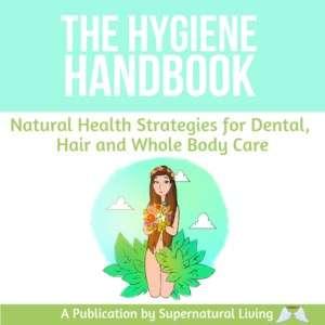 The Hygiene Handbook by Dodhisattva