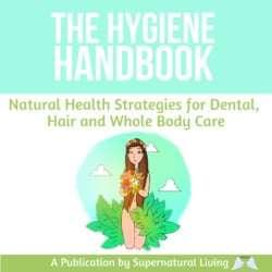 The Hygiene Handbook