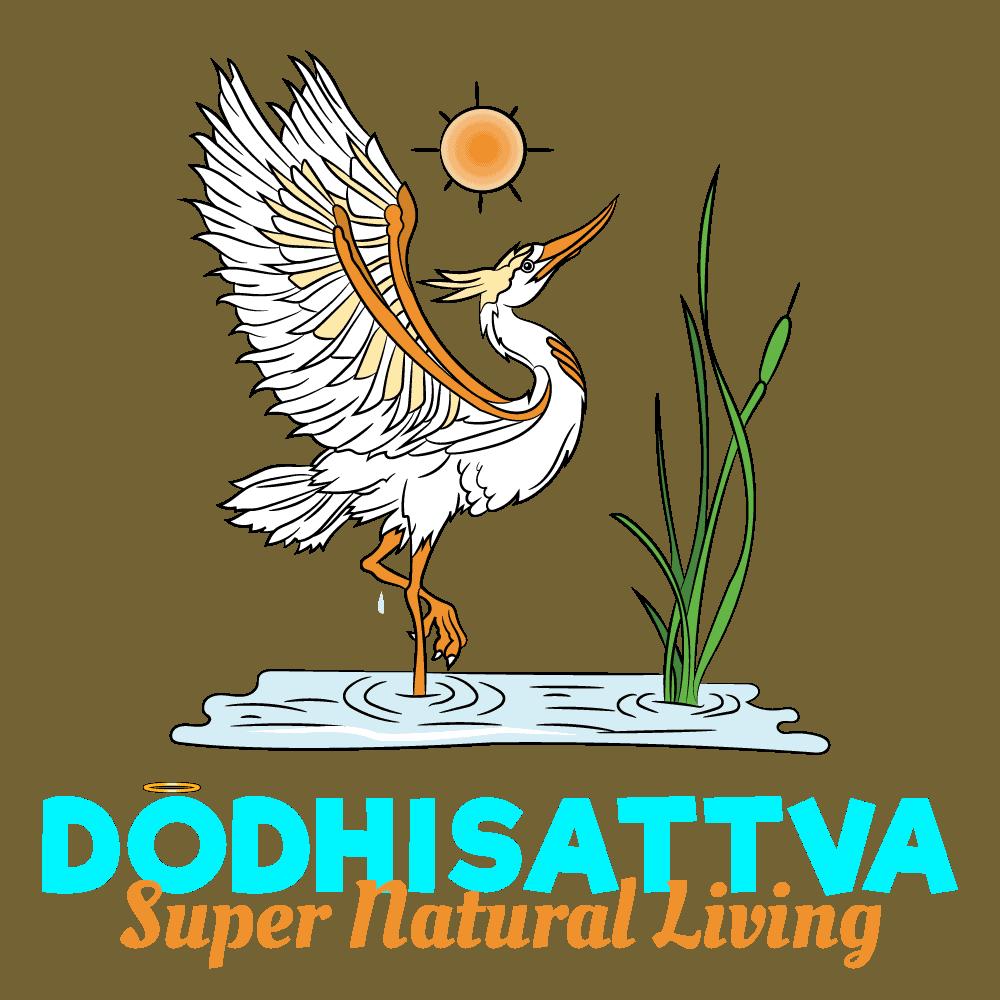 The Dodhisattva